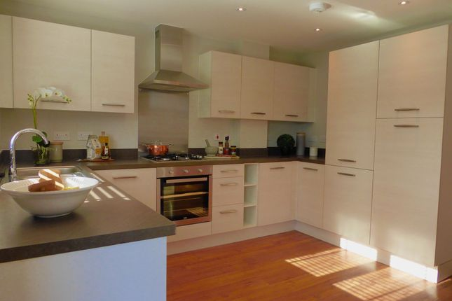 Thumbnail Semi-detached house for sale in Romsey Road, Shirley, Southampton