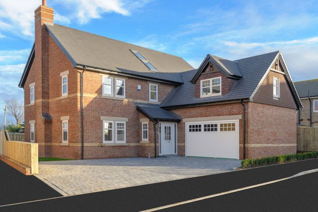 Thumbnail Detached house for sale in Plot 18, Fairview, Cheviot Meadows, Acklington, Northumberland