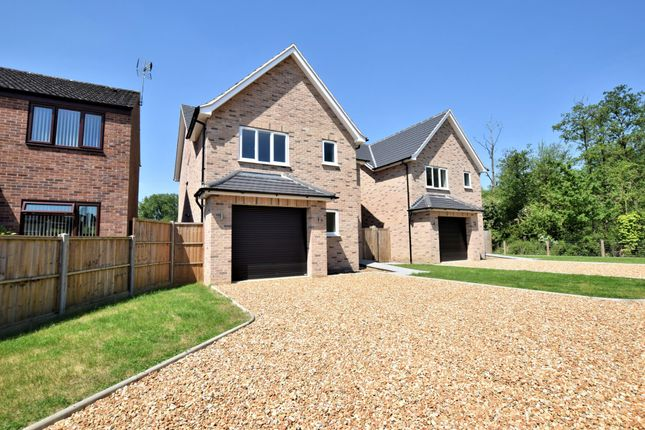 Thumbnail Detached house for sale in Malsters Close, Mundford, Thetford