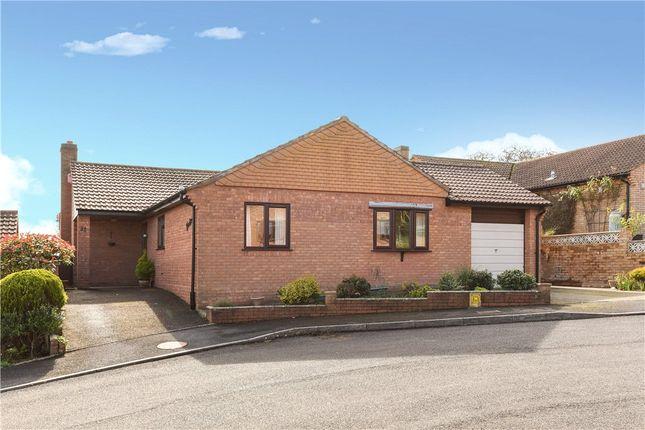 Thumbnail Detached bungalow for sale in Watton Park, Bridport