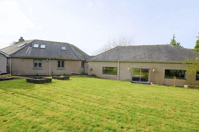 Property To Rent Or Buy In Tavistock