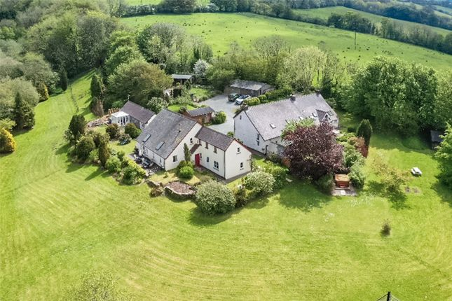 Thumbnail Detached house for sale in Wellstone Cottages, Nantyweirglodd Isaf, Llanfyrnach