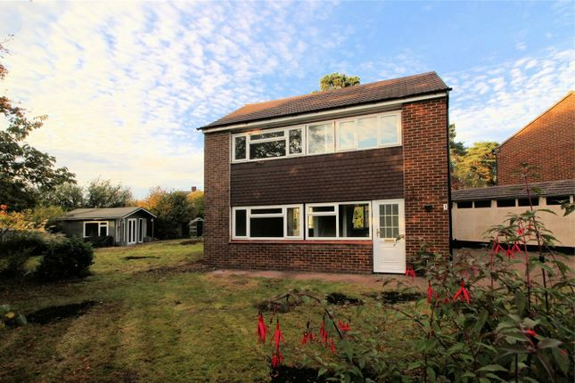 Thumbnail Detached house to rent in Bisley, Woking, Surrey