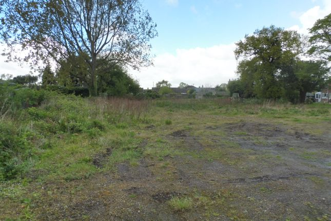 Thumbnail Land for sale in The Street, Catfield, Great Yarmouth