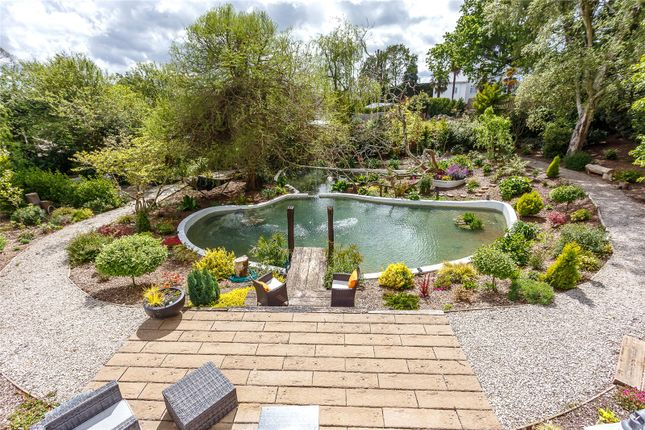 Feature Pond of Canford Rise, 72 Middlehill Road, Wimborne, Dorset BH21