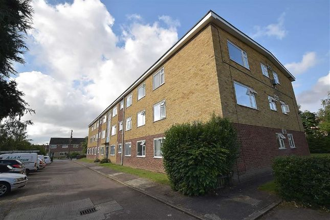 Thumbnail Flat to rent in Mill Beck Court, Cottingham