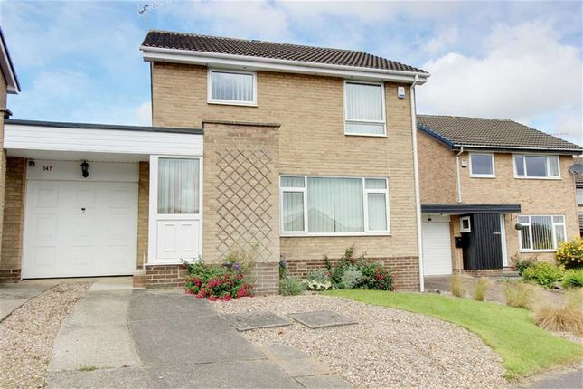 Thumbnail Detached house to rent in Moorland View Road, Walton, Chesterfield, Derbyshire