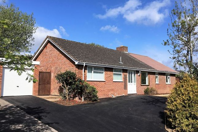 Thumbnail Detached bungalow for sale in Great Mead, Bishops Hull, Taunton
