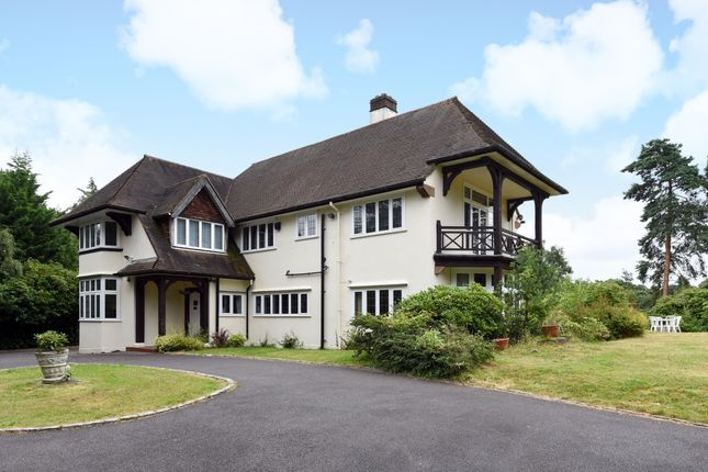 Thumbnail Detached house to rent in Pine Coombe, Shirley Hills, Surrey