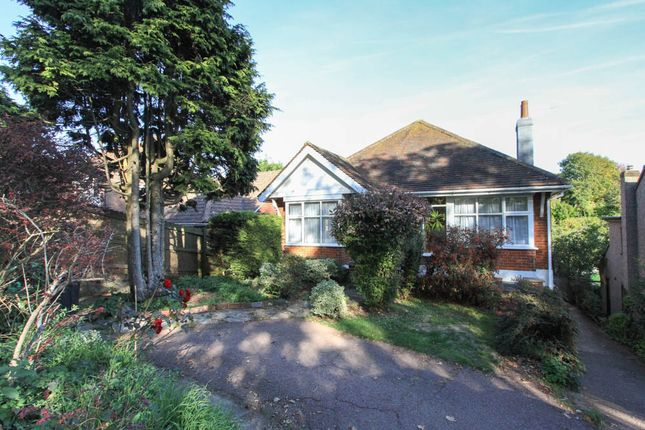 Detached house to rent in Falmer Road, Brighton