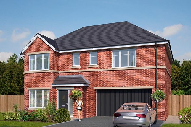 "Thumbnail Detached house for sale in ""The Cotham"" at Standbridge Lane, Crigglestone, Wakefield"