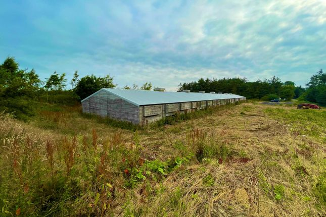 4 bed barn conversion for sale in Ingoe, Newcastle Upon Tyne NE20