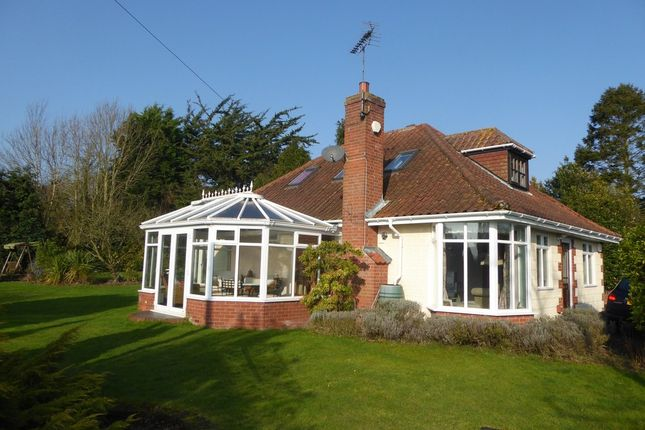 Thumbnail Detached bungalow for sale in London Road, Beccles