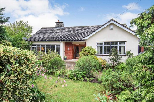 Thumbnail Bungalow for sale in Kingsfield Avenue, Ipswich