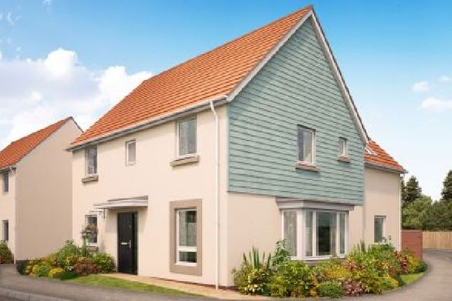 Thumbnail Detached house for sale in Landsdowne Park, Totnes, Devon
