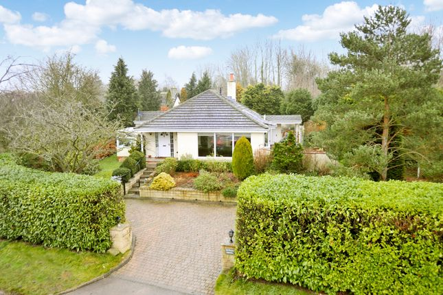 Thumbnail Detached bungalow for sale in Arkendale Road, Staveley, Knaresborough