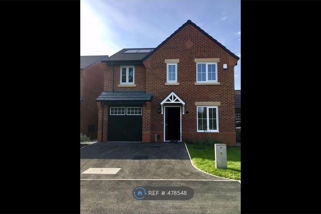 Thumbnail Detached house to rent in Dorchester Road, Cottam