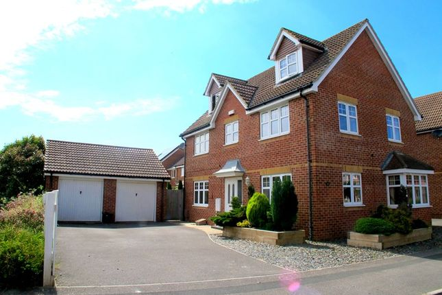 Thumbnail Detached house for sale in Proctor Drive, Lee-On-The-Solent
