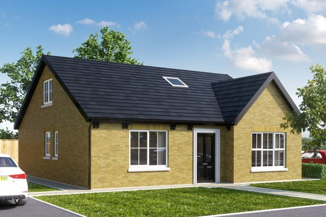 Thumbnail Detached bungalow for sale in Site 11 Towerview Meadow, Cloughey