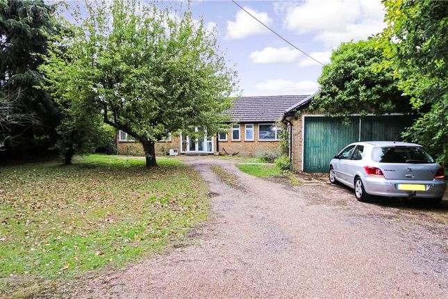 Thumbnail Detached bungalow for sale in Cupernham Lane, Romsey, Hampshire