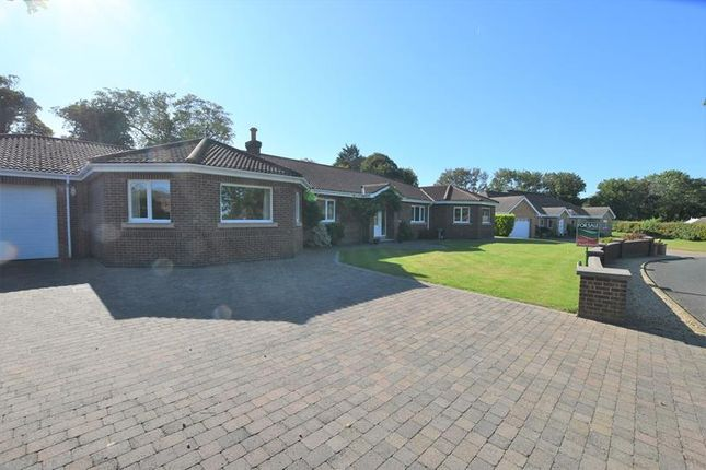Thumbnail Detached house to rent in Westhill Village, Jurby Road, Ramsey