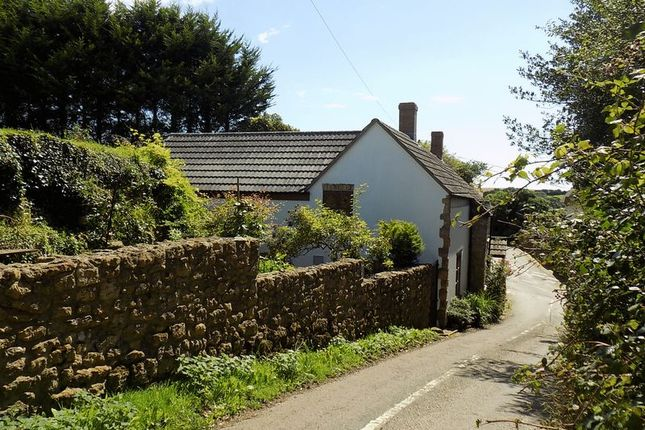 Thumbnail Detached house for sale in Brook Street, Shipton Gorge, Bridport, Dorset