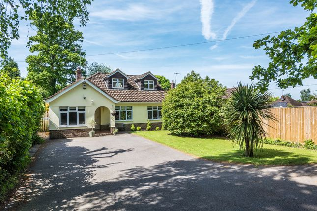 Thumbnail Detached bungalow for sale in Mill Lane, Felbridge