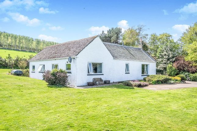 Thumbnail Bungalow for sale in Edderton, Tain