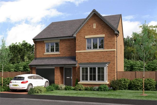 "Thumbnail Detached house for sale in ""The Chadwick"" at Low Lane, Acklam, Middlesbrough"