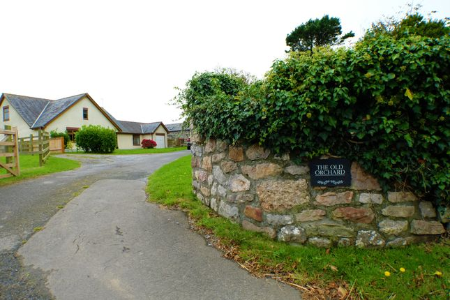 Thumbnail Detached bungalow to rent in Knelston, Gower, Swansea