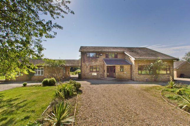 Thumbnail Detached house for sale in Carbrooke Road, Ovington, Thetford