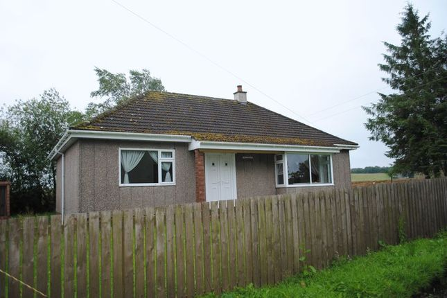 Thumbnail Detached bungalow to rent in Forth, Lanark