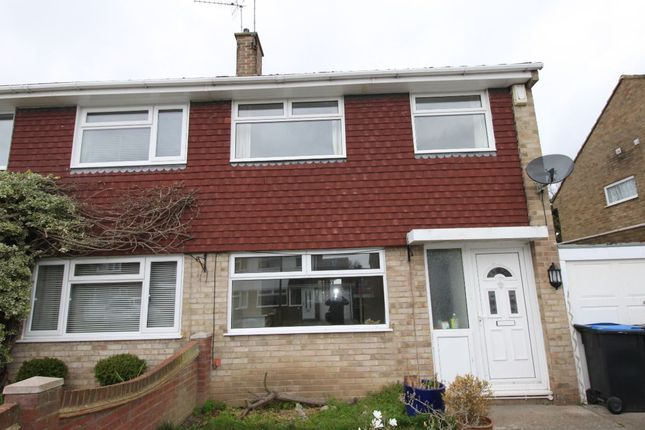 Thumbnail Semi-detached house to rent in The Hawthorns, Broadstairs