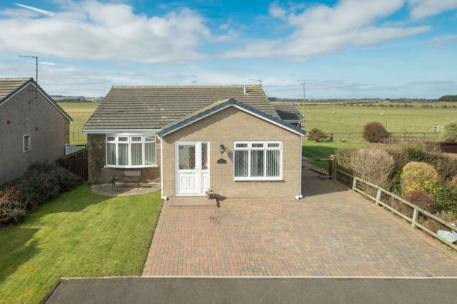 Thumbnail Bungalow for sale in 7 Bowmere, Boulmer, Northumberland