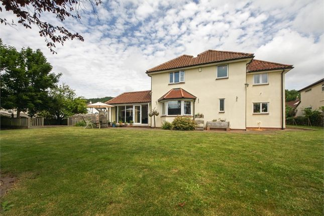 Thumbnail Detached house for sale in Awli, Hannay Road, Cheddar, Somerset