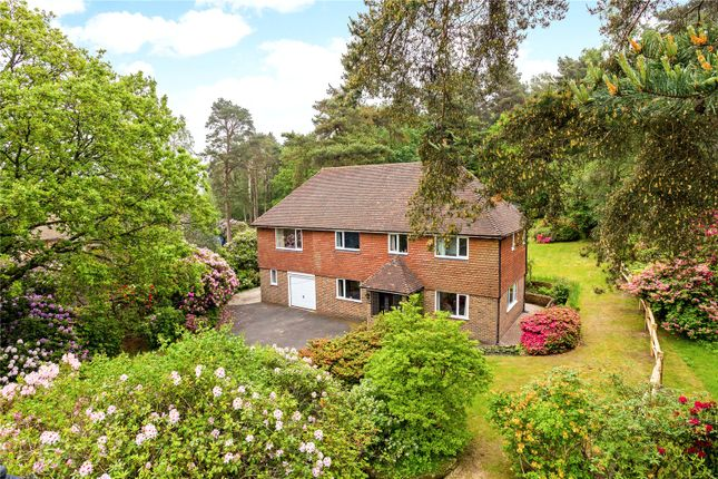 Thumbnail Detached house for sale in Goldsmiths Avenue, Crowborough, East Sussex