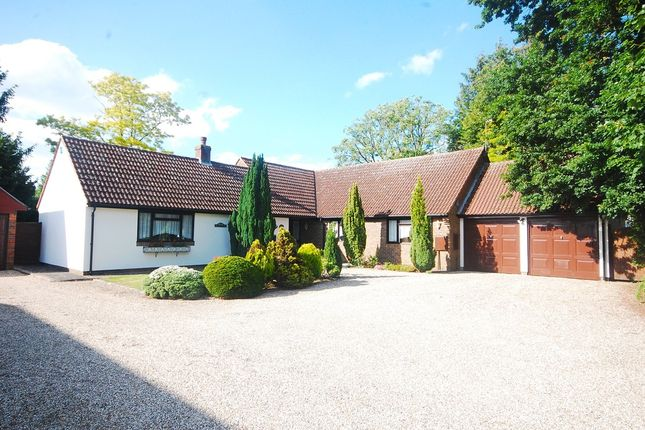 Thumbnail Bungalow for sale in Church Lane, Old Springfield, Chelmsford