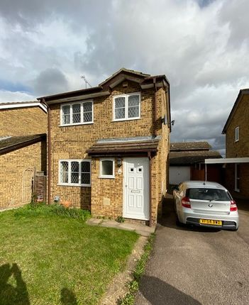 Thumbnail Detached house to rent in Celandine Drive, Luton