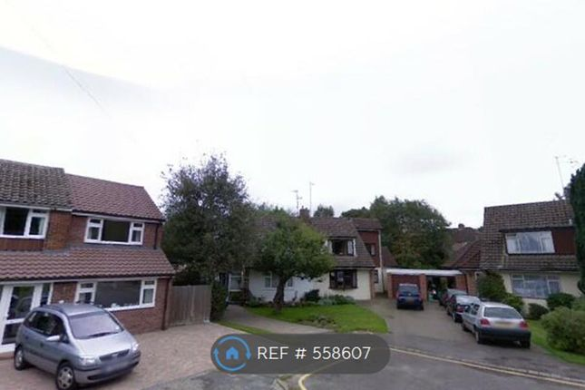 Thumbnail Semi-detached house to rent in Madison Way, Sevenoaks