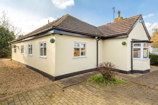 Thumbnail Detached bungalow to rent in Leeds Road, Selby