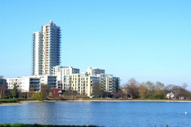 Shoreline, London N4
