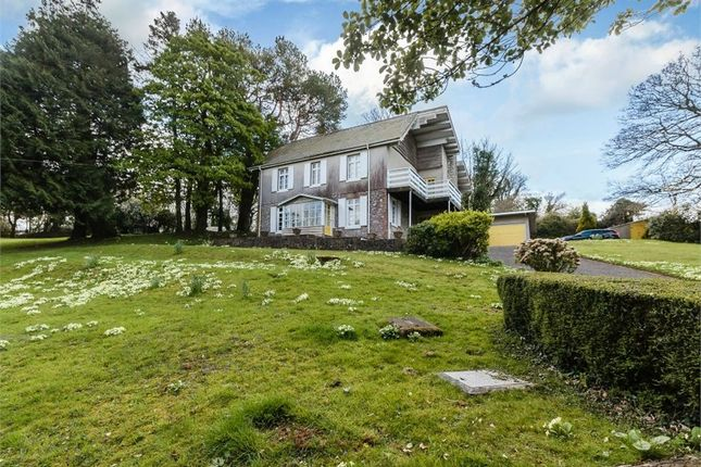 Thumbnail Detached house for sale in Claddon Lane, Maidencombe, Torquay, Devon