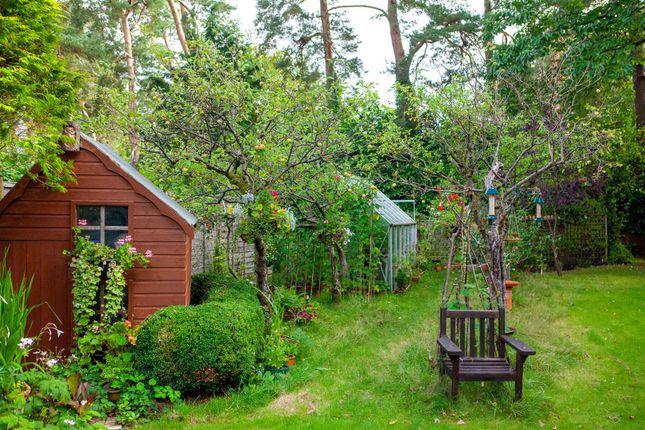 Garden of Glenwood Road, West Moors, Ferndown BH22