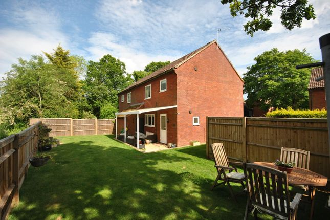 Thumbnail Semi-detached house for sale in Griggs Meadow, Dunsfold, Godalming