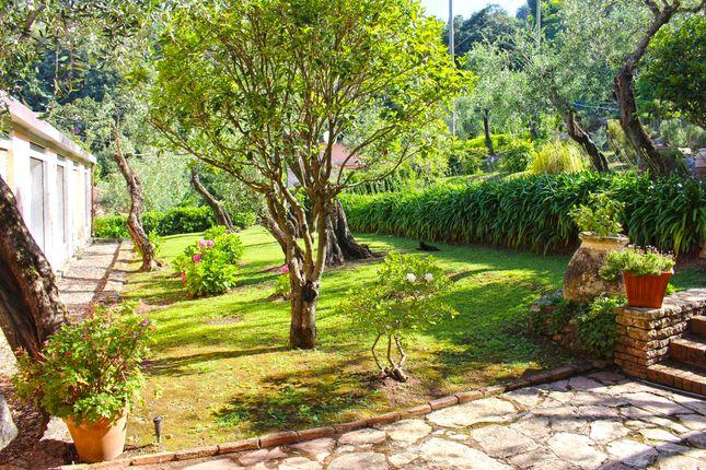 Garden of Lerici, La Spezia, Liguria, Italy