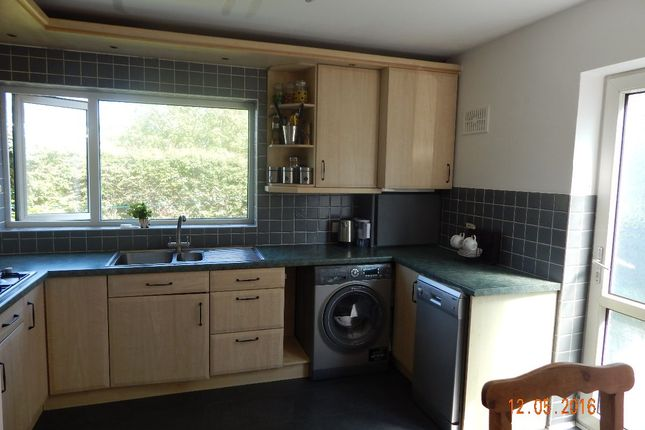 Thumbnail Detached house to rent in Chestnut Grove, Sprotborough