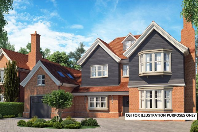 Thumbnail Detached house for sale in Chestnut Avenue, Chichester, West Sussex