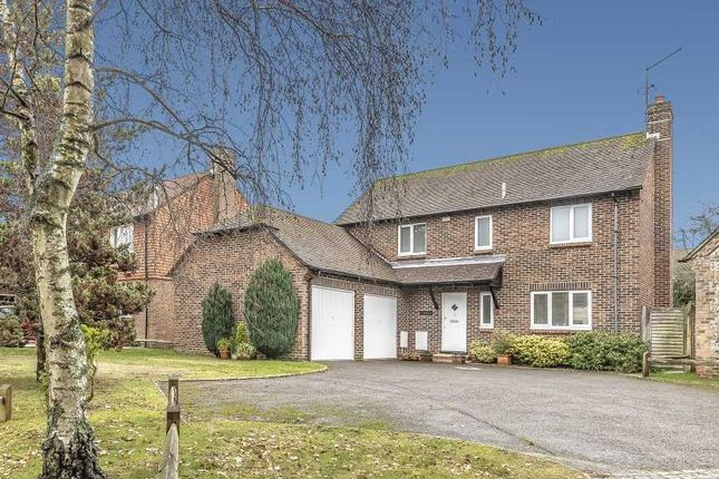 Thumbnail Detached house for sale in Selham Close, Chichester