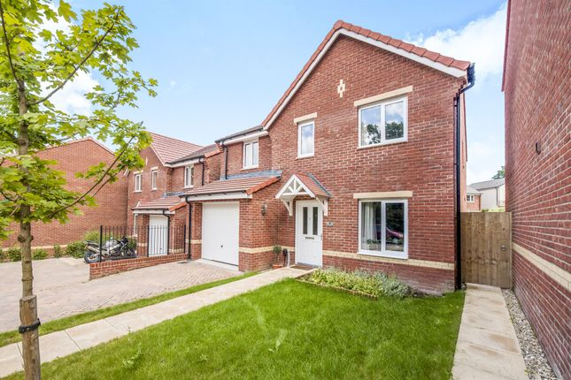 Thumbnail Detached house for sale in Nettle Close, Newton Abbot