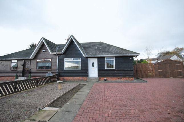 Thumbnail Semi-detached bungalow for sale in 23 Mainholm Crescent, Ayr